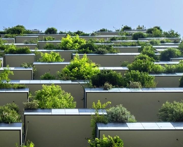 Newest property listings in Bratislava